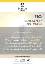 Śląskie lokalnie - konkurs na małe granty FIO w